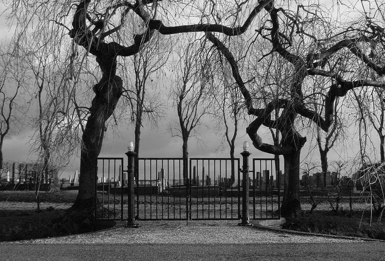 begraafplaats_thesinge